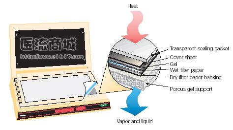 美国 Bio-Rad 165-1790 583型+HydrTech真空泵 凝胶干燥系统