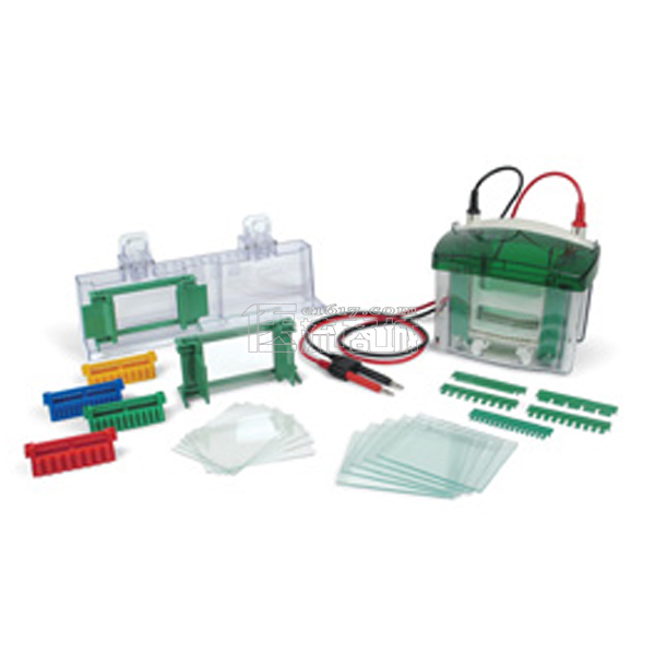 伯乐 Bio-rad 165-8000 Mini-PROTEAN Tetra Cell 小型垂直电泳槽 4块胶 40个样电泳槽
