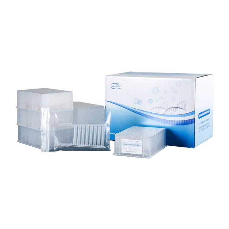 磁珠法口腔拭子DNA提取试剂盒(100份,B瓶装)