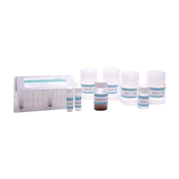 磁珠法组织DNA提取试剂盒(96份,B板装)