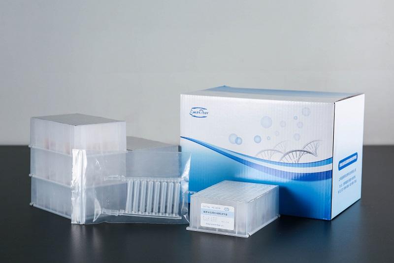 磁珠法血液RNA提取试剂盒(100份,瓶装)