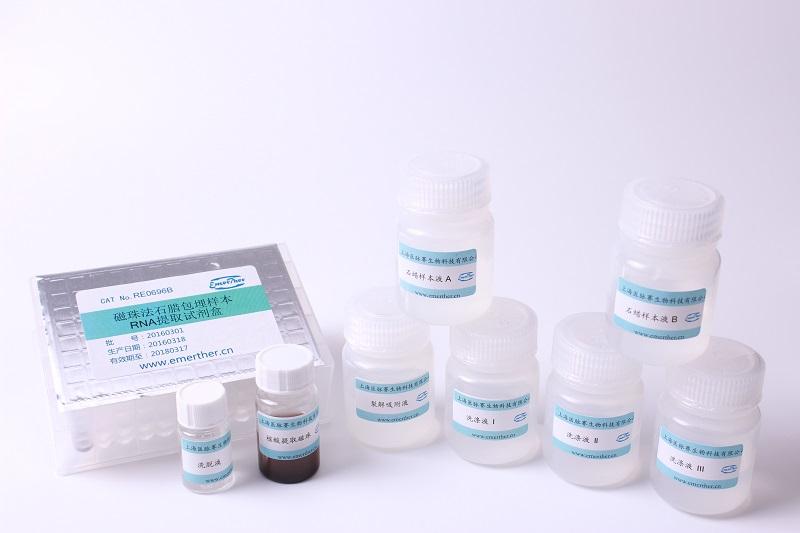 磁珠法石蜡包埋样品RNA提取试剂盒(96份,B板装)