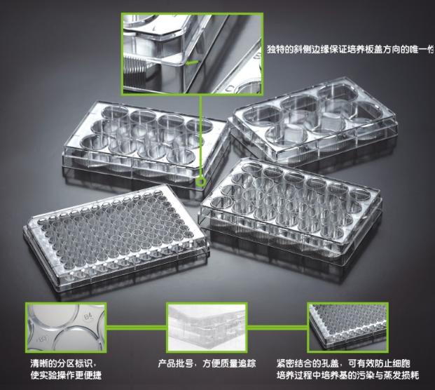 洁特96孔细胞培养板
