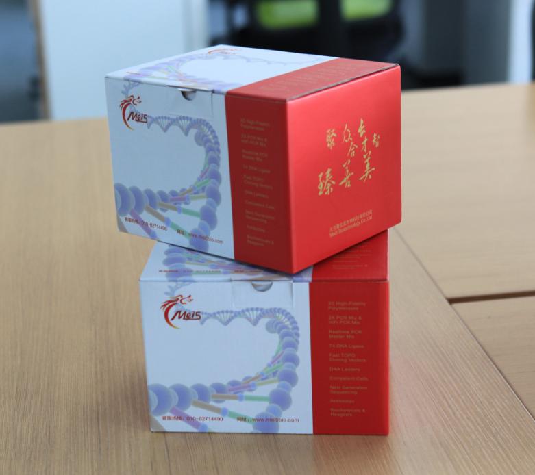 M5 One-Step RT-PCR Kit
