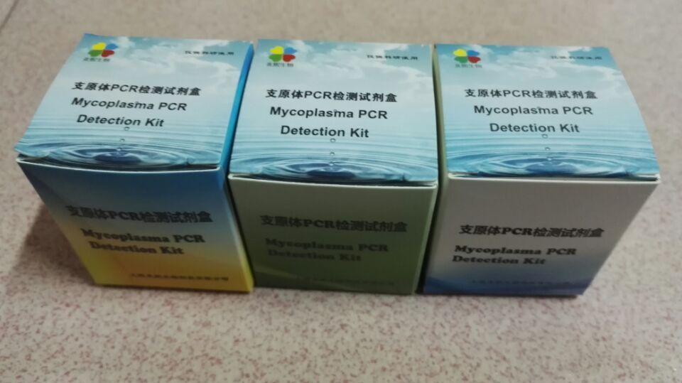 炎熙生物 支原体PCR检测试剂盒 50次PCR反应