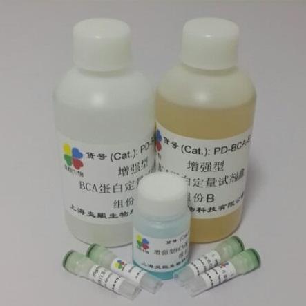 炎熙生物 增强型BCA蛋白定量试剂盒 500毫升