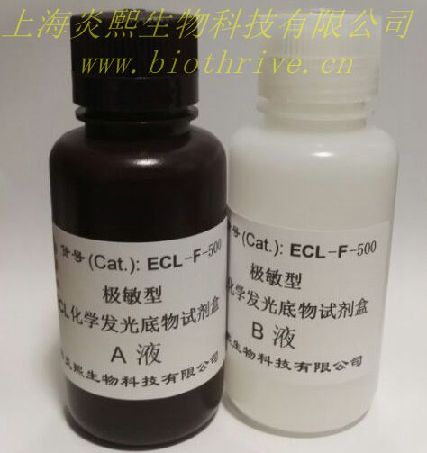 炎熙生物 极敏型ECL化学发光底物试剂盒 500毫升
