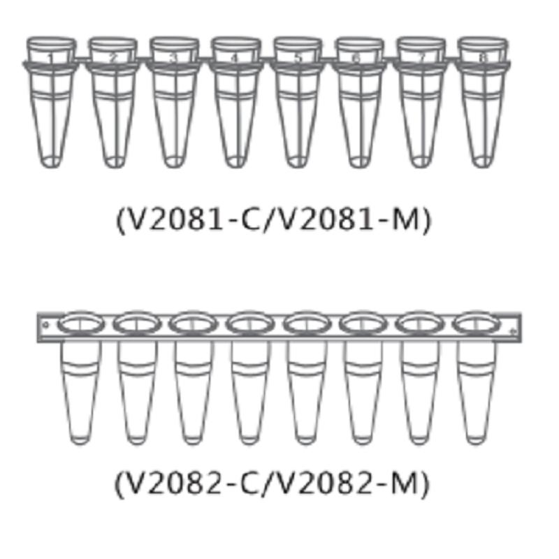 天津本生0.2 ml透明八联管配荧光定量PCR八联管光学平盖