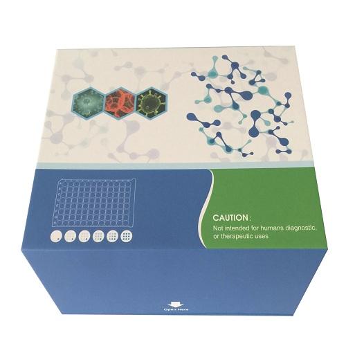 本生供应蛋白试剂盒,人钙联蛋白(calnexin)ELISAkit