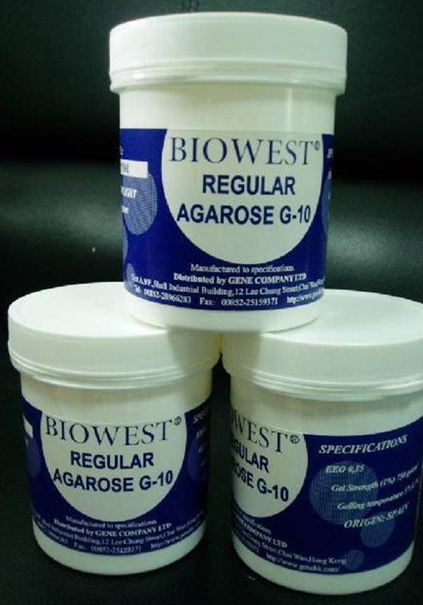西班牙Biowest Agarose 琼脂糖 100g原装进口9012-36-6
