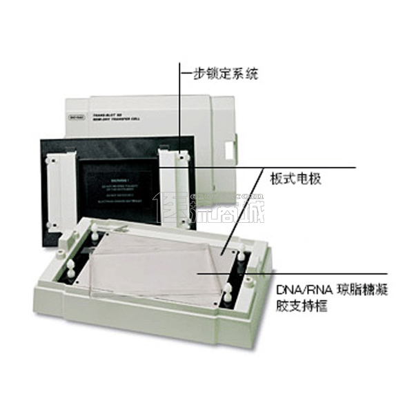 Bio-rad 170-3940 Trans-Blot SD