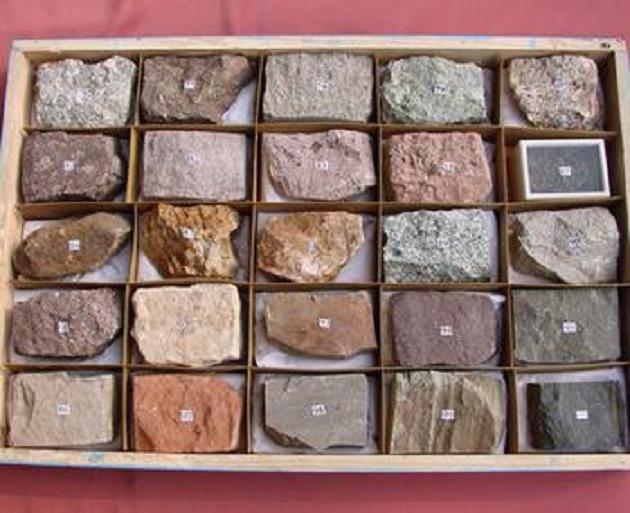 沉积岩标本(24种)