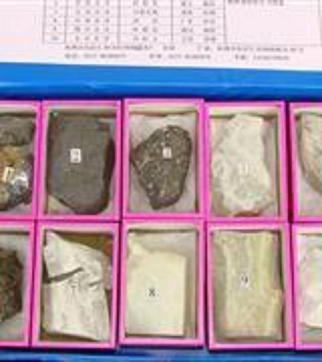 矿物光泽标本(12种)