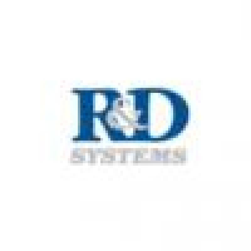 RnD 小鼠干细胞因子 Mouse SCF Quantikine ELISA Kit