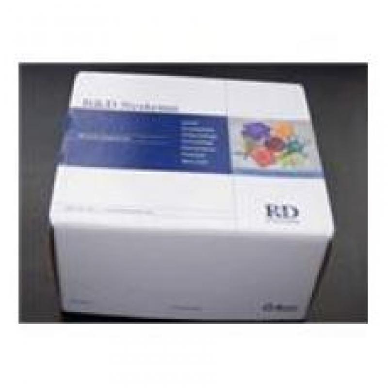 Mouse Osteoprotegerin/TNFRSF11B Quantikine ELISA Kit