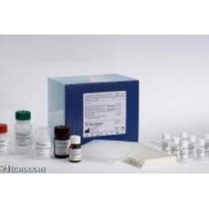 RECI 雌二醇(E2)