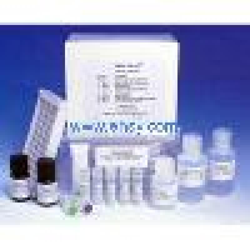 大鼠内脂素/内脏脂肪素(visfatin)ELISA Kit Rat visfatin ELISA Kit