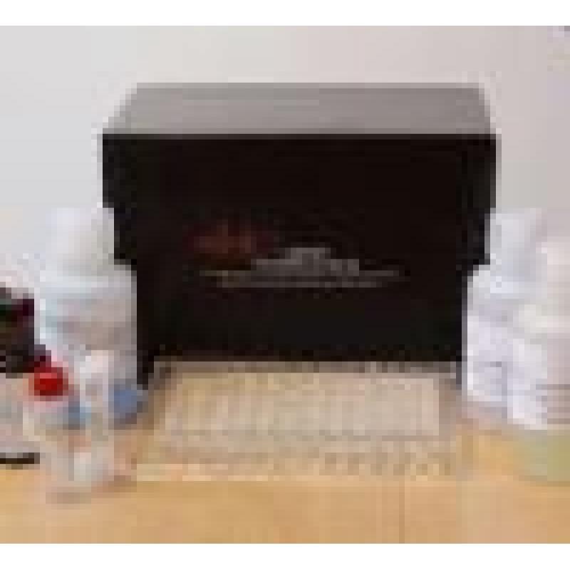 小鼠内脂素/内脏脂肪素(visfatin)ELISA Kit Mouse visfatin ELISA Kit
