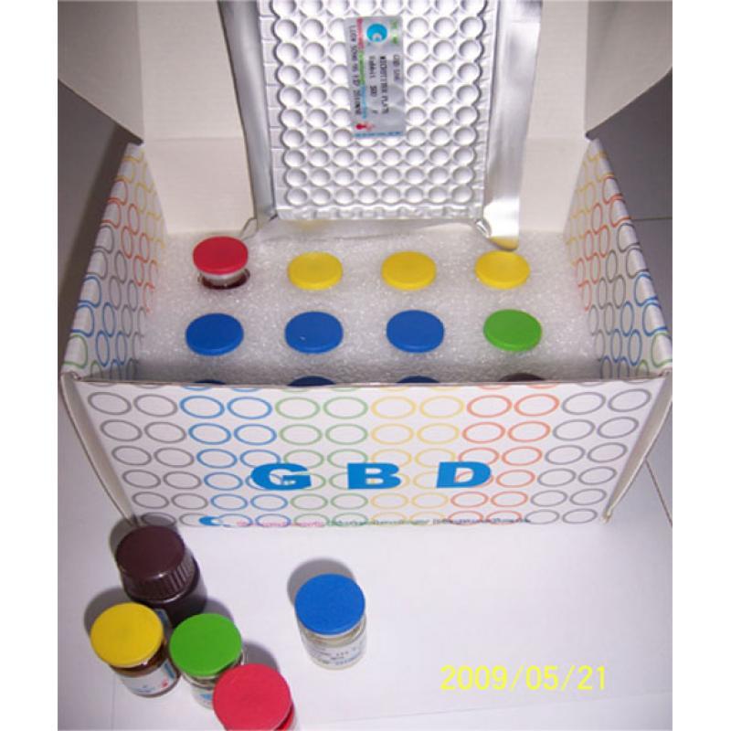 GBD 大鼠内脂素/内脏脂肪素(visfatin)ELISA Kit Rat visfatin ELISA Kit