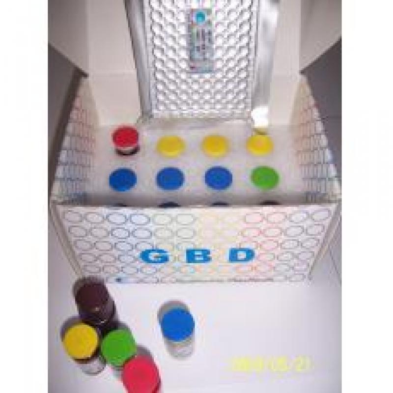 GBD 环磷酸鸟苷 (cGMP)