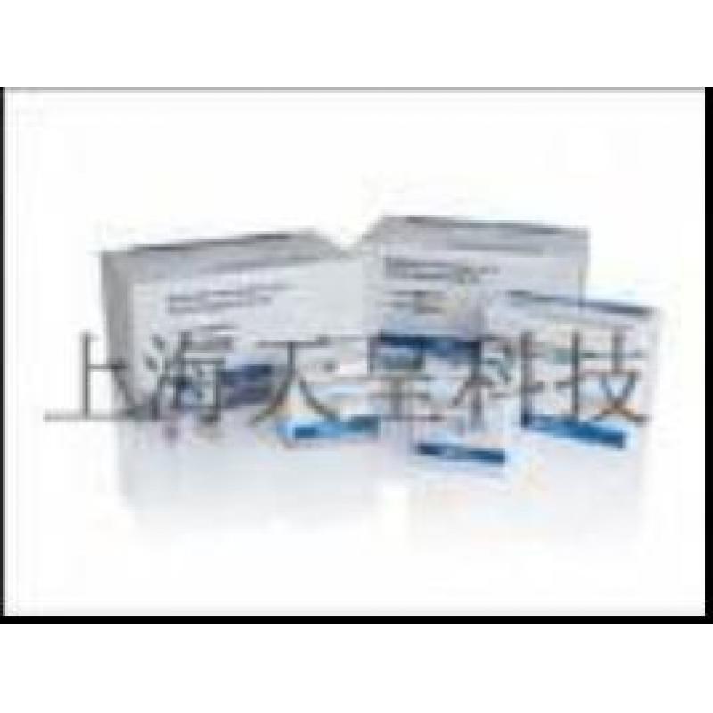 弓形虫抗体检测试剂盒