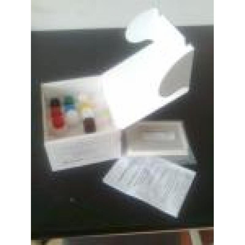 犬细小病毒抗体检测试剂盒(CPV)
