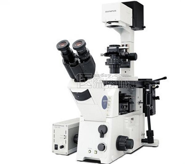 奥林巴斯 IX71-F22FL/DIC荧光倒置显微镜  三目