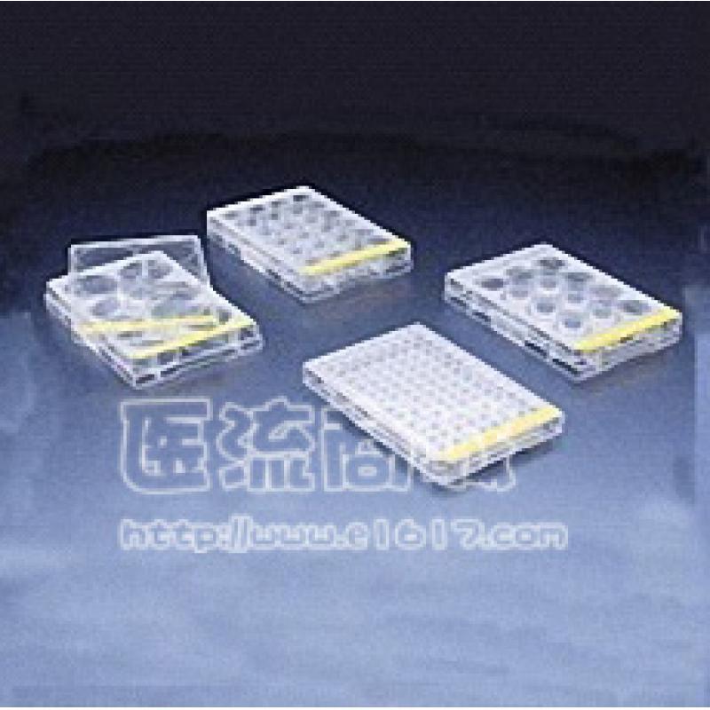 广州洁特TCP010096 96孔一次性培养板