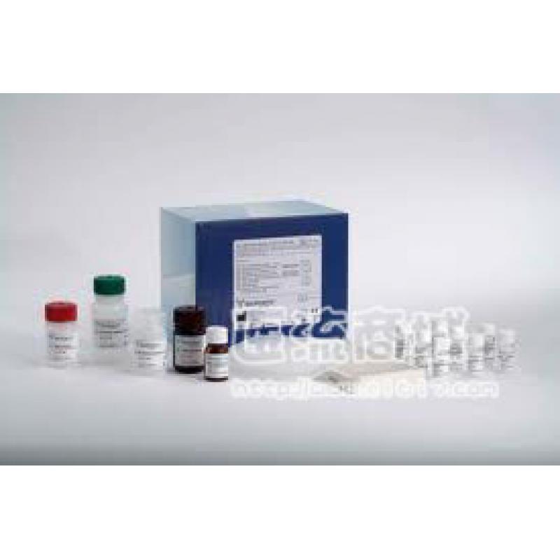 小鼠白介素-γ定量酶免试剂盒Mouse IFN-gamma Quantikine ELISA Kit, 2 Plate