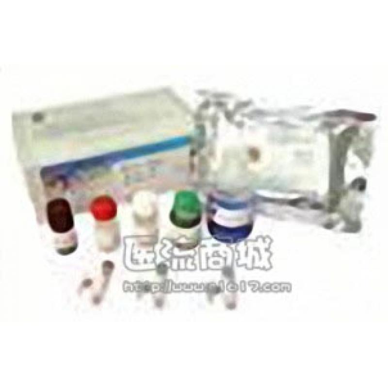 hnRNP M1-4 (3C181)抗体
