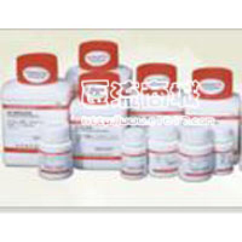 Sigma 牛血清白蛋白 Bovine Albumin