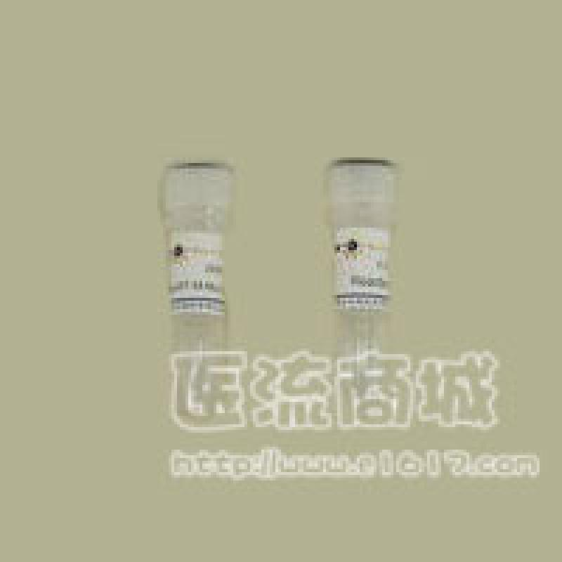 M-MLV逆转录酶(M-MLV Reverse transcriptase)(Invitrogen)