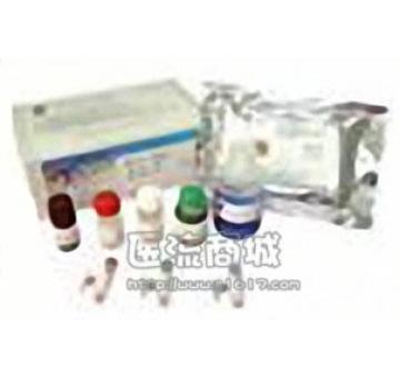 hnRNP E1/E2 (H-110)抗体