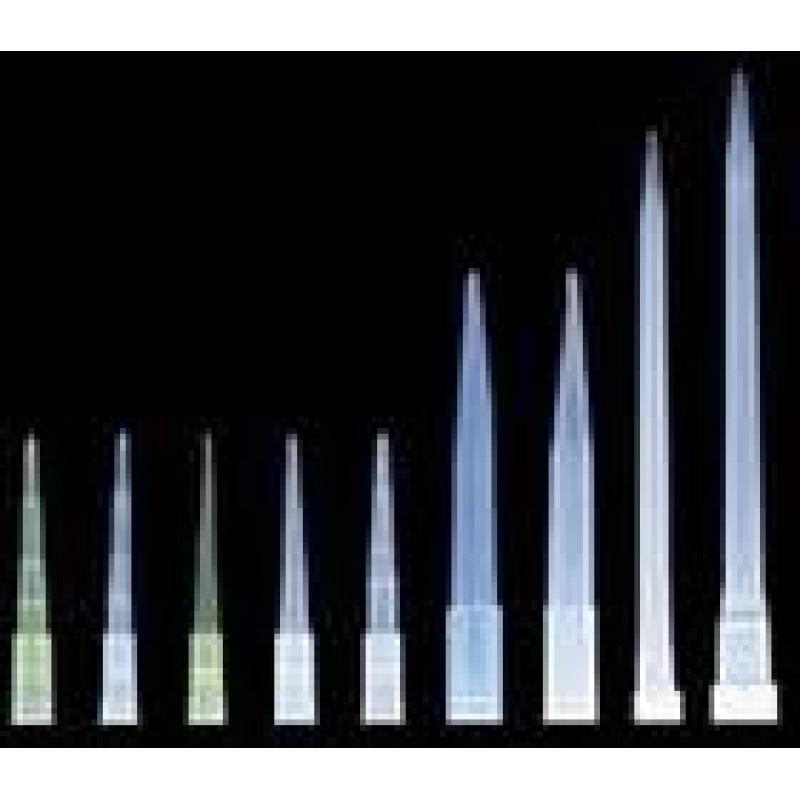 单管 0.2ml 领成 进口PE料 可荧光定量