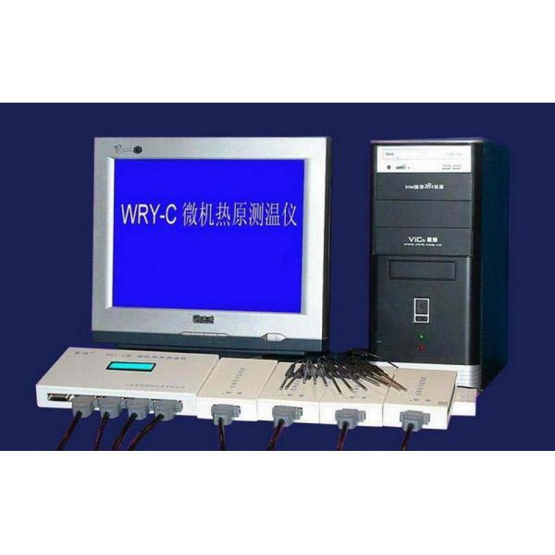 黄海药检WRY-C微热源测温仪