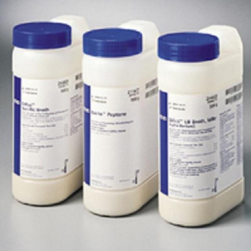 BD 500g 胰蛋白胨Tryptone