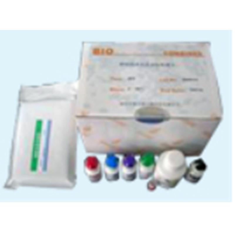 猪肺炎支原体(MHP)核酸扩增ELISA检测试剂盒(40T)