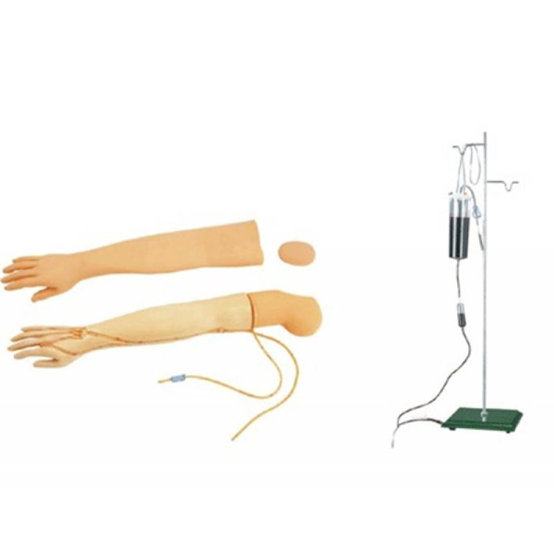 SBK/Y127手臂静脉穿刺及肌肉注射训练模型(可换外皮,可进行静脉的注射、输液(血)、抽血等穿刺训练功能)