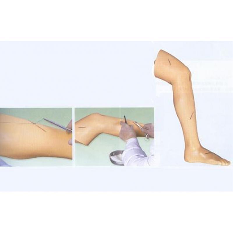 GD/LV2外科缝合腿肢模型