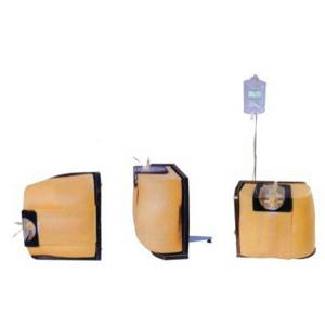 GD/L68脊柱穿刺模型 (模型可以立式穿刺和卧式穿刺)
