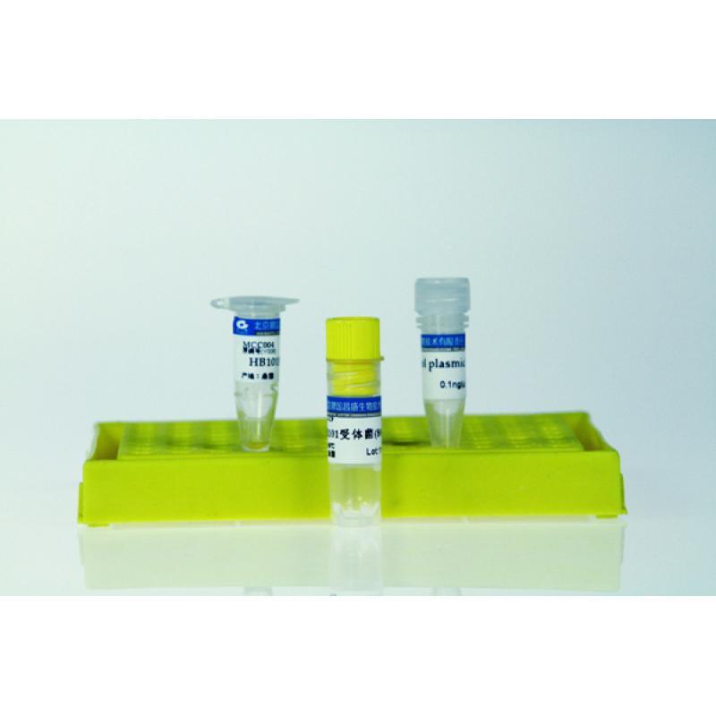 高效感受态细胞制备试剂盒 200*100ul