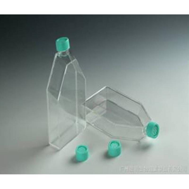 600ml标准型细胞培养瓶 182.0cm2 表面处理 滤膜盖 5个/包
