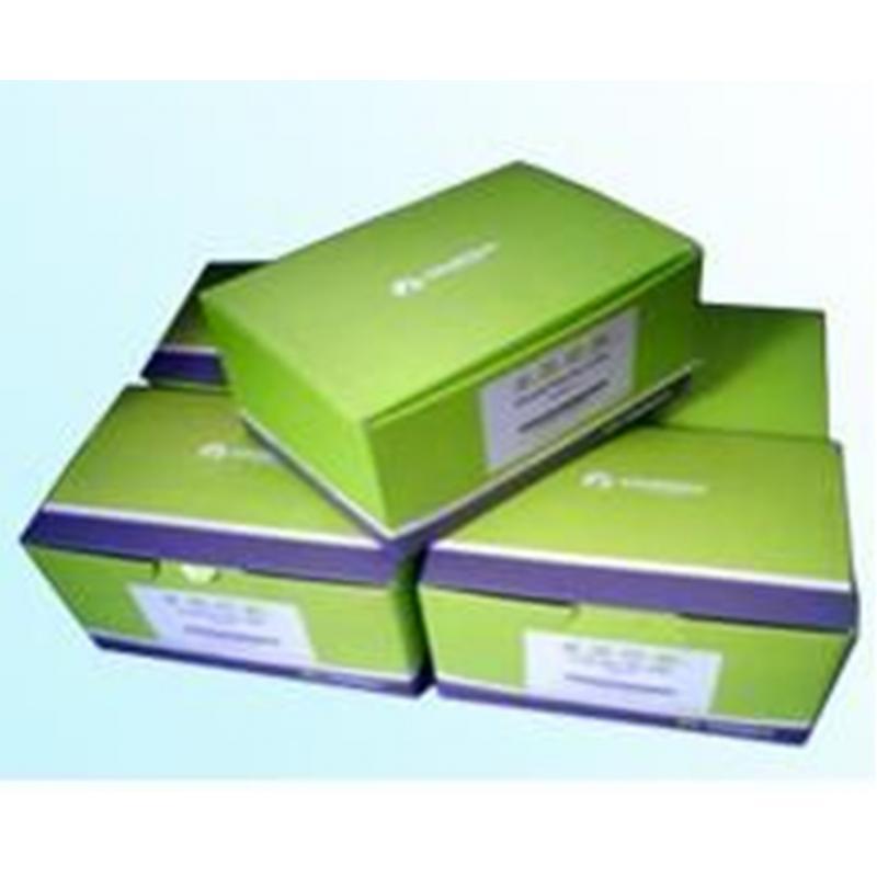 Omega  无内毒素质粒中量快速提取试剂盒 Endo-Free Plasmid Midi Kit-fast 2次