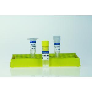 高效感受态细胞制备试剂盒 100*100ul