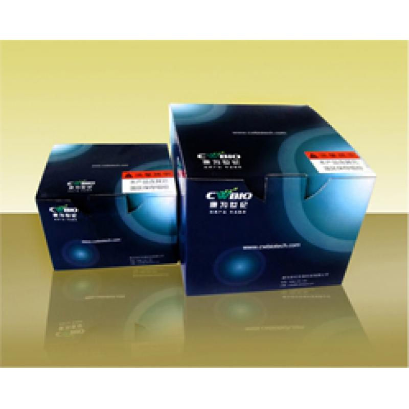 PUC-T TA克隆试剂盒 pUC-T Cloning Kit 含载体、连接酶、感受态细胞 20次