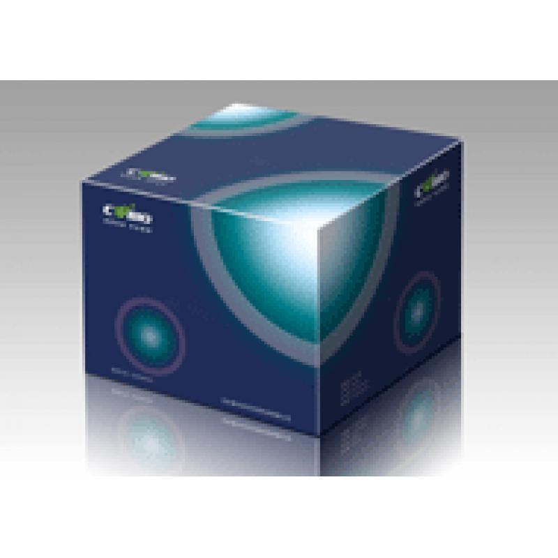 菌落PCR试剂盒 Colony Fast PCR Kit 100次