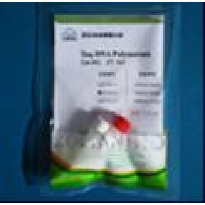 平末端DNA加A试剂盒 25次