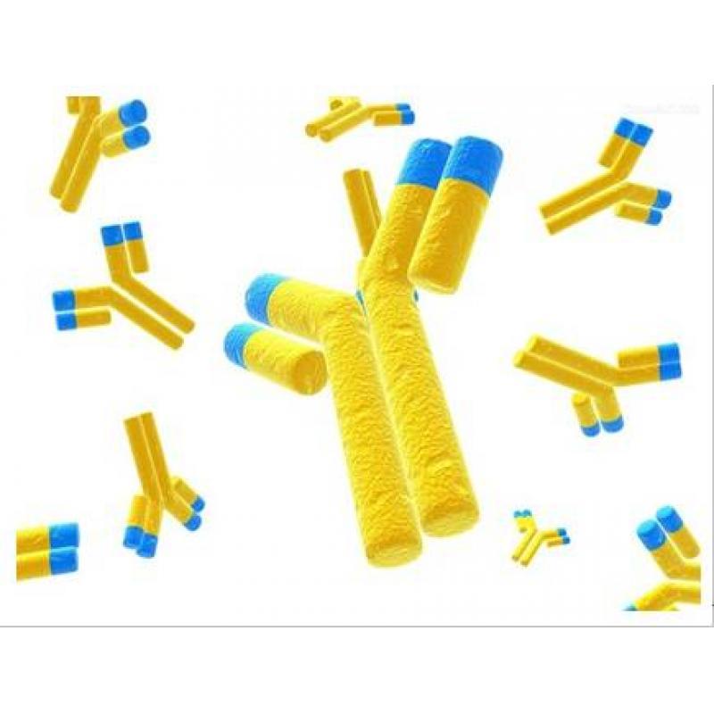 辣根过氧化物酶标记的河豚毒素单克隆抗体 Anti-TTX/HRP 100ug