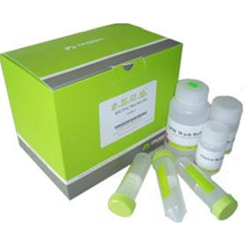 OMEGA病毒RNA提取试剂盒 200次 Viral RNA Isolation Kit