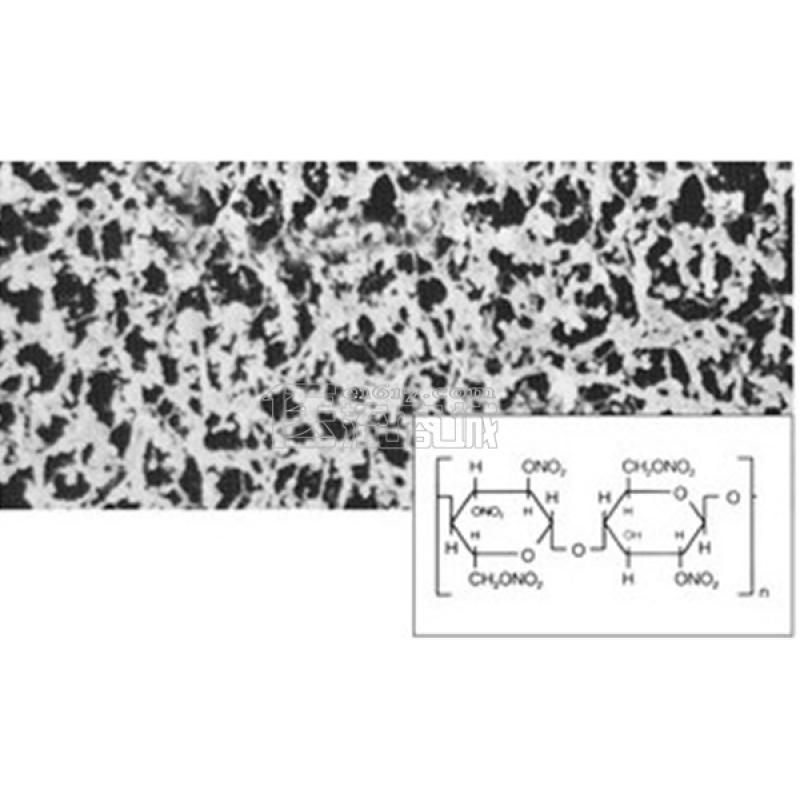 Sartorius 11306-50-N Φ50*0.45um 硝酸纤维素(CN)膜 100/PK